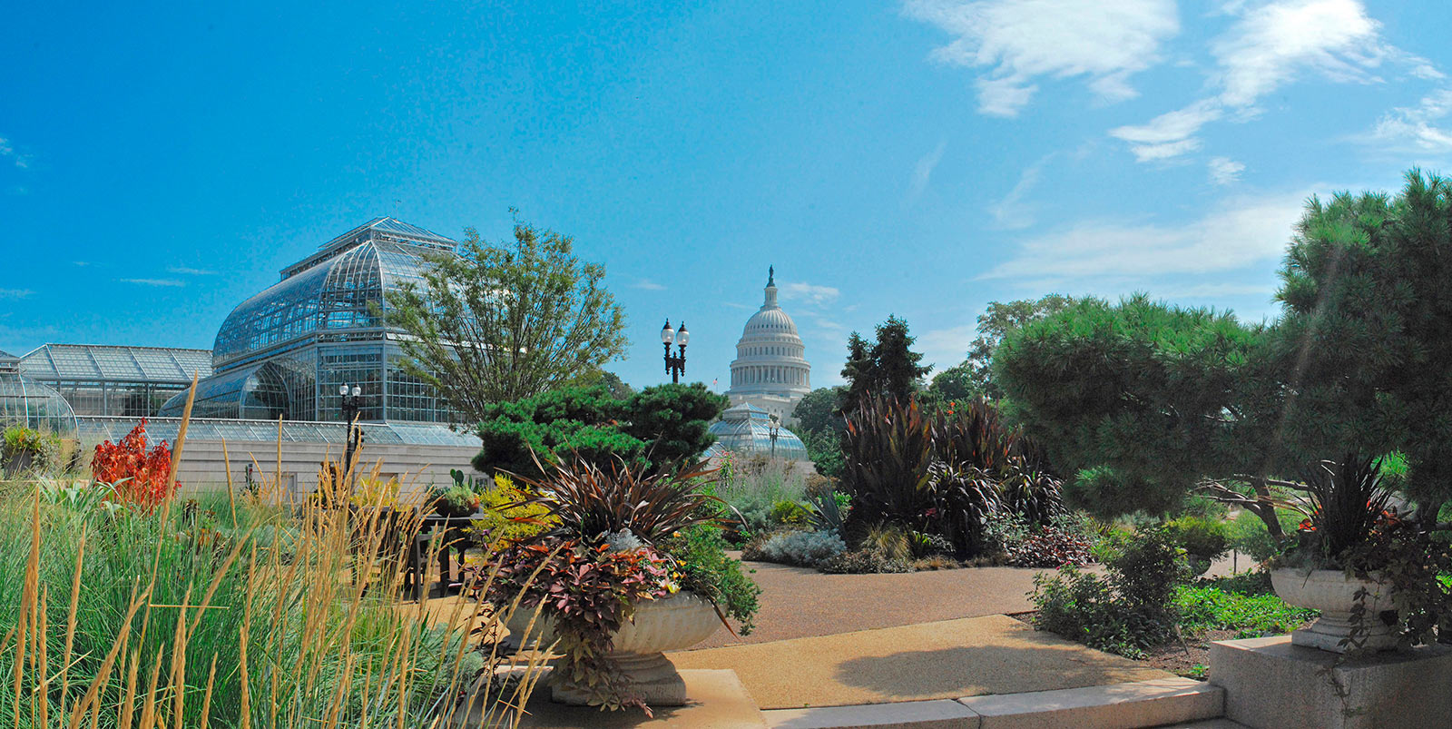 U.S. Botanic Garden - Free Things to Do in Washington, DC