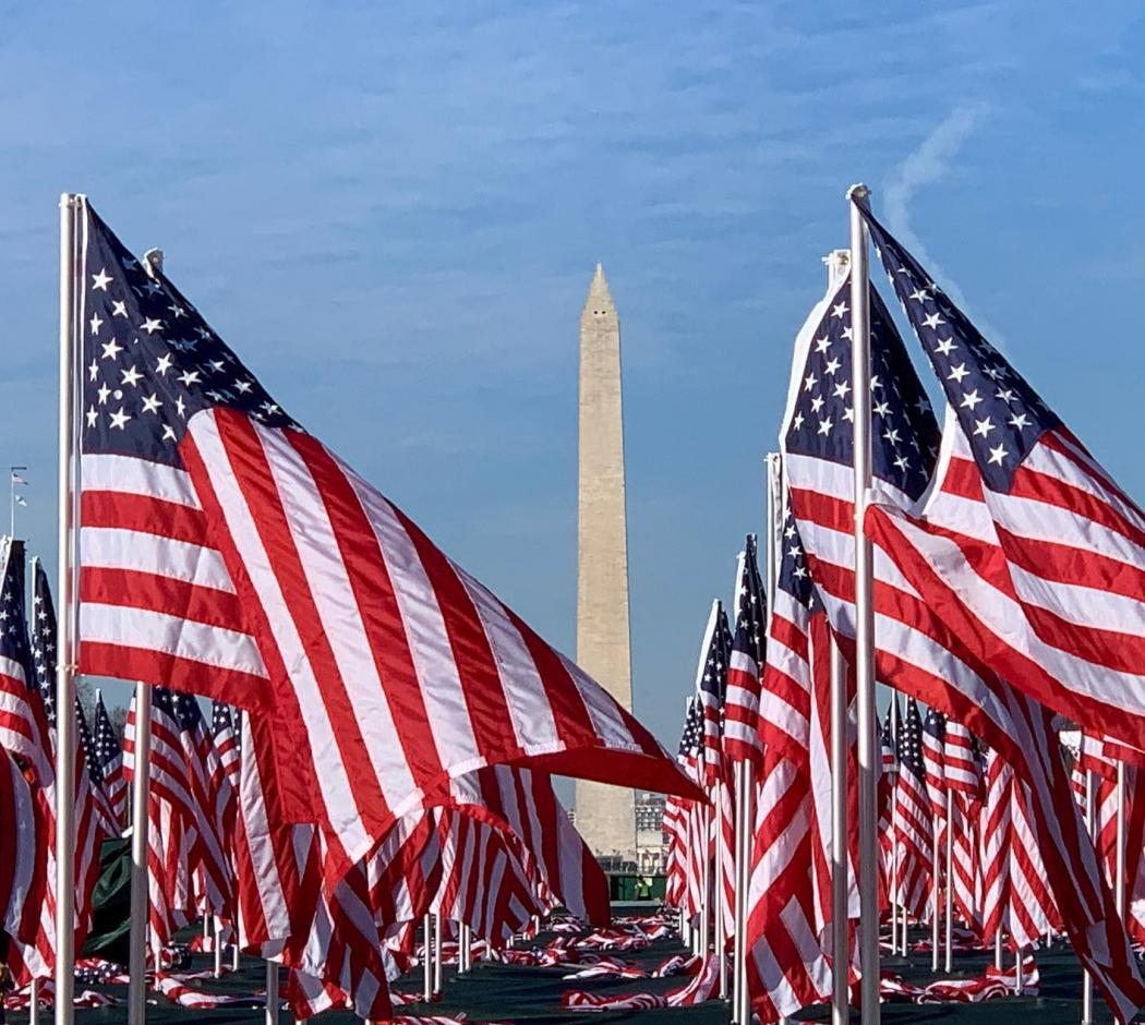 @mplleafphotos - National Mall with American Flags on it